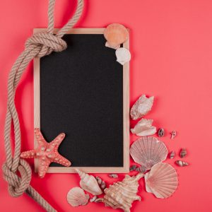 tied rope and seashells with blank blackboard on coral background
